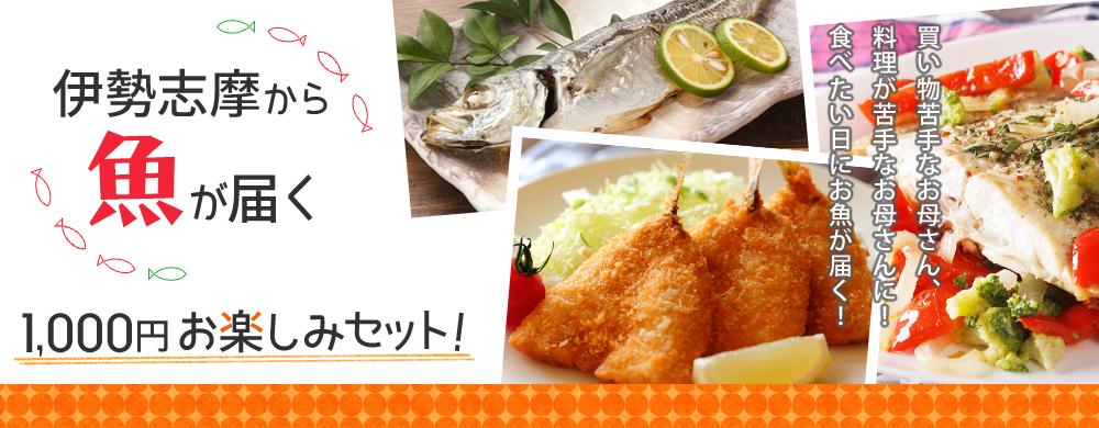 伊勢志摩から魚が届く